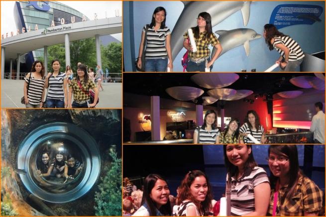20130511 Aquarium 01