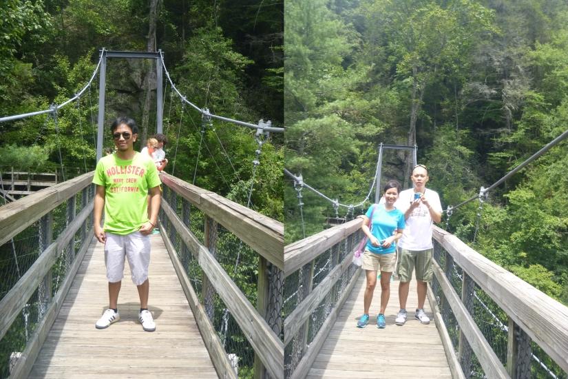 Bridge and friends!