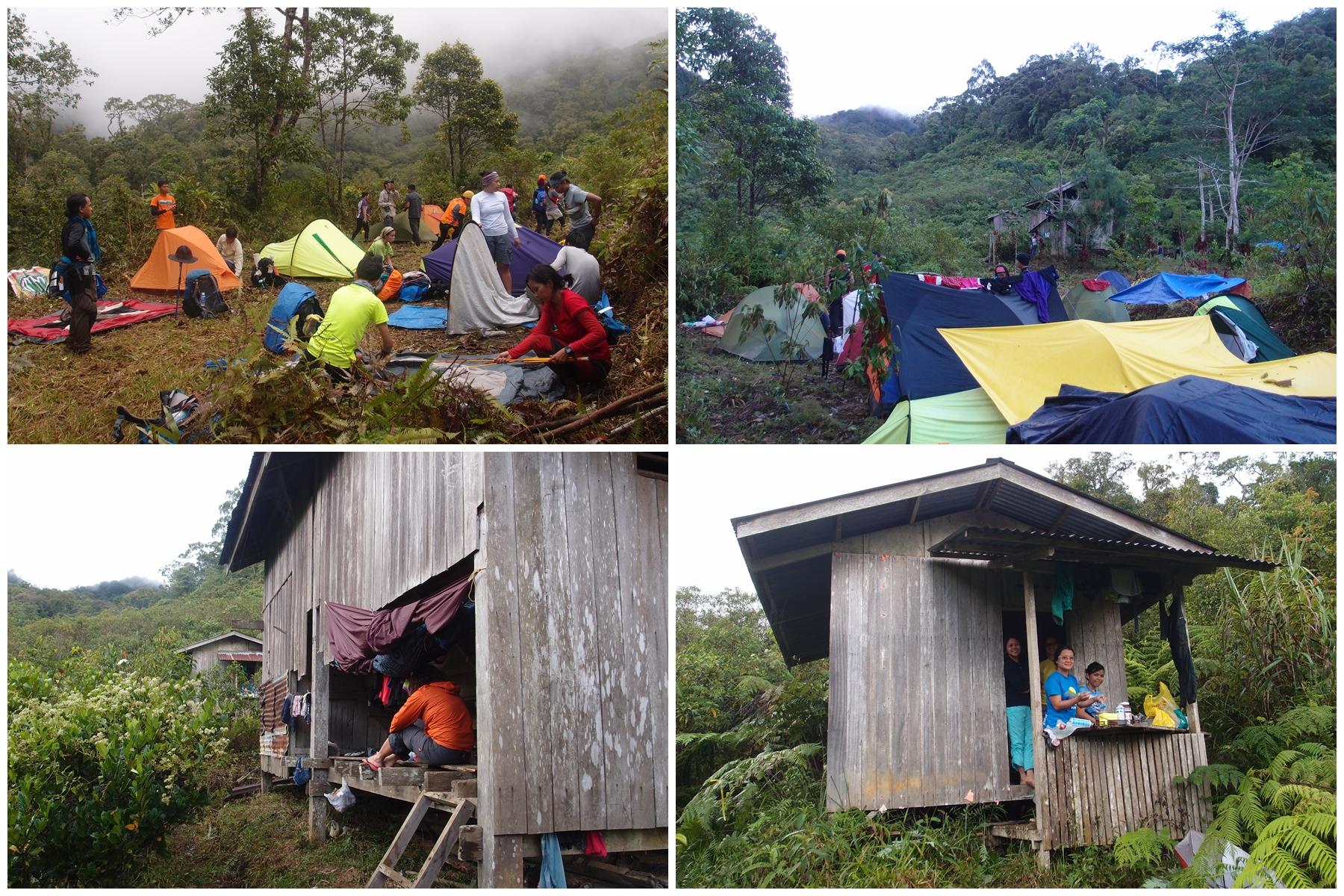 06 camp 2 whole